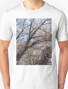 Japanese Cherry Blossom (Sakura) 1 T-Shirt