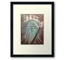 Wizard Wishes Framed Print