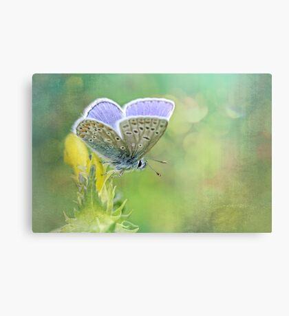 Enjoy Spring... Canvas Print