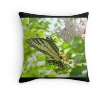Butterfly02 Throw Pillow