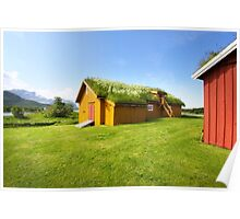 Green Roofs of Norway Poster