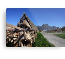 Scenic Cod in the Lofoten Islands, Norway Metal Print