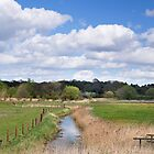 Snape Marsh  Suffolk  UK by James  Key