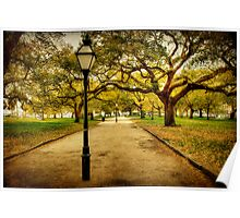 A Walk in the Park: Charleston, SC Poster