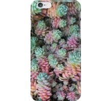 Rainbow Sedum iPhone Case/Skin