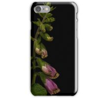 Digitalis purpurea pink foxglove iPhone Case/Skin