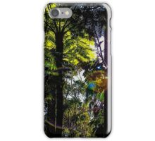 Late afternoon in the forest. iPhone Case/Skin