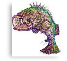 Color Grouper Canvas Print