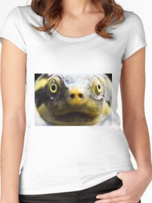 Turtle 1 Women's Fitted Scoop T-Shirt