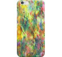 Colours Rainbow iPhone Case/Skin