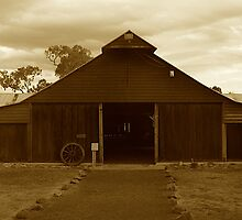 The Shearing Shed by blackdogimages