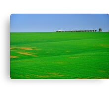 Empty landscape.  Canvas Print