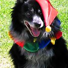 """""""Chester the Jester"""" by waddleudo"""