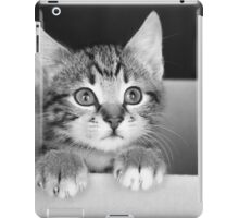 Kitten in a box 2 (non-clothing products) iPad Case/Skin