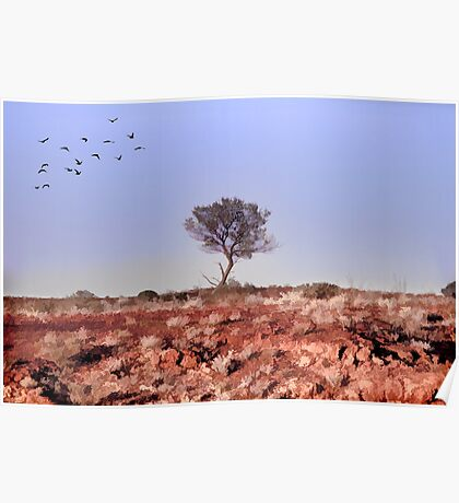 Lone Tree, Outback Australia. Poster