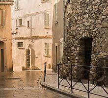 Vers la citadelle by Cvail73