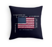 July 4th 1960 Throw Pillow