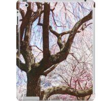 Cherry Tree Closeup iPad Case/Skin