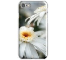 Winters Essence iPhone Case/Skin