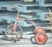 The Joy of Tricycles  by PictureNZ