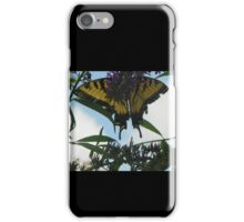 Butterfly016 iPhone Case/Skin