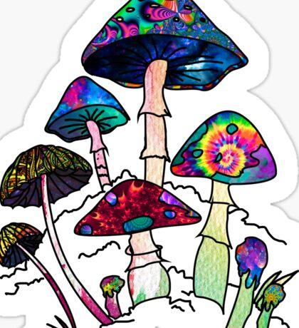 Garden of Shroomz Sticker