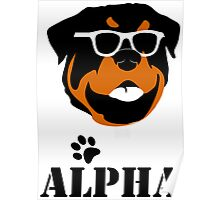 Geeky Alpha Poster