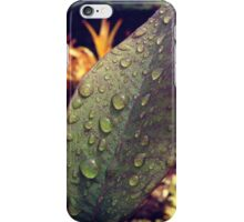Hawaii Rain iPhone Case/Skin