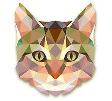 Cat Miauw Photographic Print