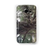 Willow Tree Samsung Galaxy Case/Skin