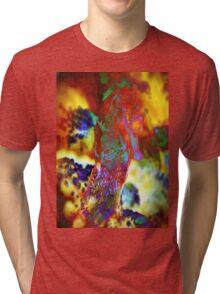 4497 Seahorse Tri-blend T-Shirt