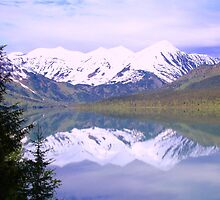 Alaskan Peaks by Elizabeth  Lilja