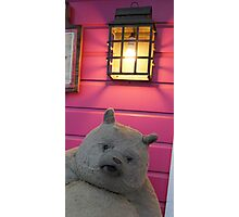 Creepy Bear Photographic Print