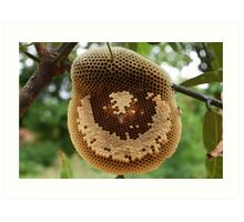 Bees on honeycomb Art Print