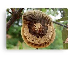 Bees on honeycomb Metal Print
