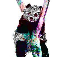 Psychedelic Pandas by FunkLyke