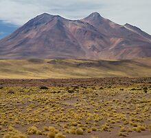 Atacama Landscape by DianaC