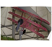 Biplane at the RHS Chelsea Flower Show Birmingham City Poster