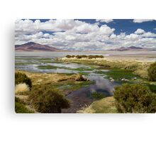 Tara Salt Flat coloured landscape Canvas Print