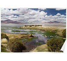 Tara Salt Flat coloured landscape Poster
