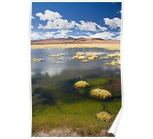 Tara Salt Flat coloured landscape II Poster
