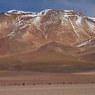 Bolivian landscape by DianaC