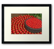 Waitrose Tomatoes on display at the  RHS Chelsea Flower Show Framed Print