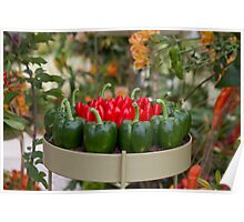 Red & green peppers on display at RHS Chelsea Flower Show Poster