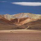 Bolivian landscape II by DianaC