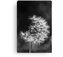 Its time Canvas Print