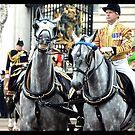One's Horse Is Stealing One's Thunder by berndt2