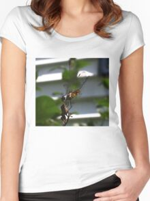 Dragonfly09 Women's Fitted Scoop T-Shirt