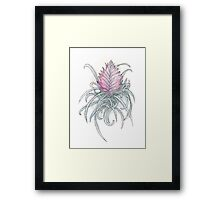 Pink Quill Framed Print