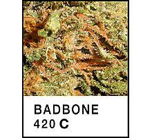 Bad Bone (Pantone) Weed 420 Photographic Print